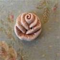 Picture of Medium Rose Cream