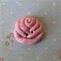 Picture of Medium Rose Red