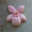 Picture of Violet Pink