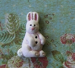 Picture of Bunny Pink