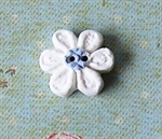 Picture of Little White daisy, blue centre