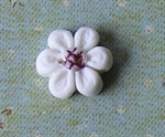 Picture of Little White daisy, Mauve centre
