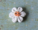 Picture of Little white daisy, Orange centre