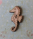 Picture of Seahorse